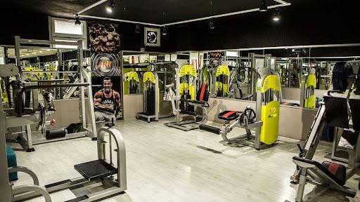 spor salonunda egsersiz yapma, makine ile kas yapma, serbest ağırlık kas çalışması